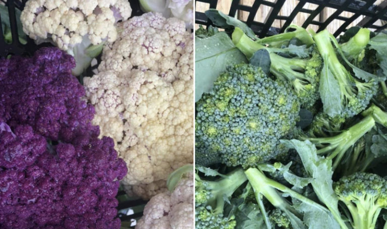 veggies for vol