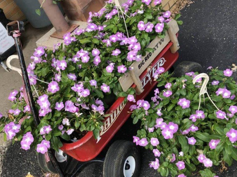 M wagon flowers